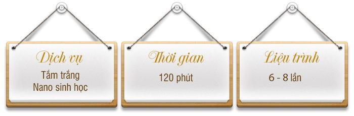 lieu-trinh-tam-trang-nano-sinh-hoc1