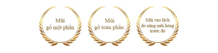chi-dinh-dieu-tri-loai-bo-song-mui-go