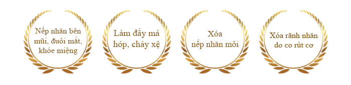 chi-dinh-dieu-tri-xoa-nhan-restylane