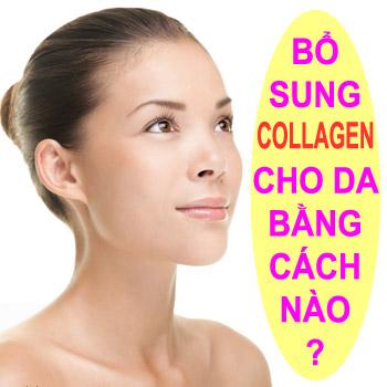sản sinh collagen và elastin 3 jpg