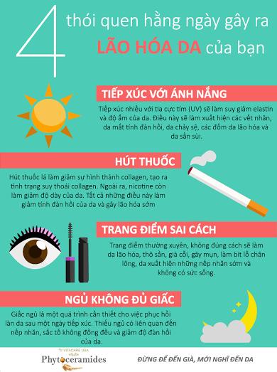 infographic-lao-hoa-da